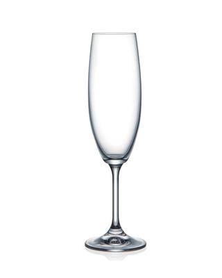 Bohemia Crystal Sklenice na šampaňské Lara 220ml (set po 5ks) SLEVA-neúplný set