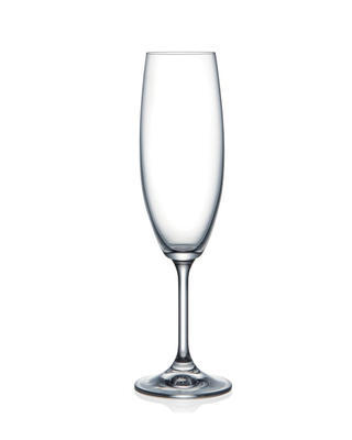 Bohemia Crystal Sklenice na šampaňské Lara 220ml (set po 6ks)